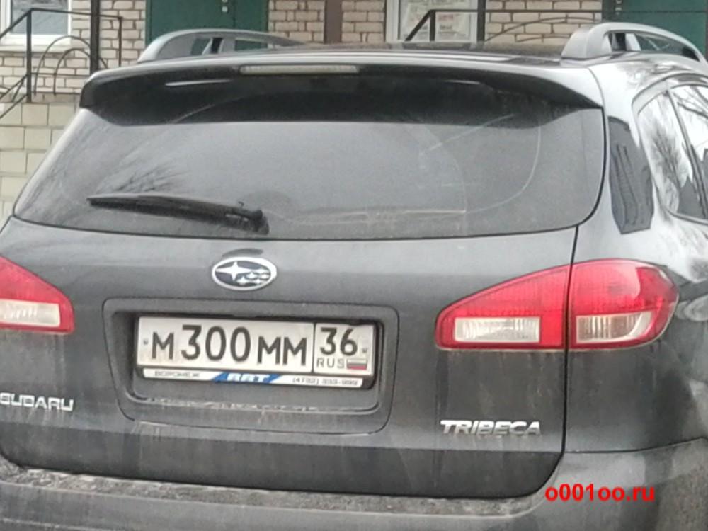 М300ММ36