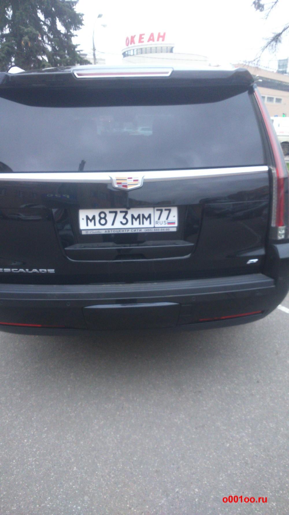 м873мм77