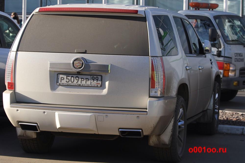 р509рр99