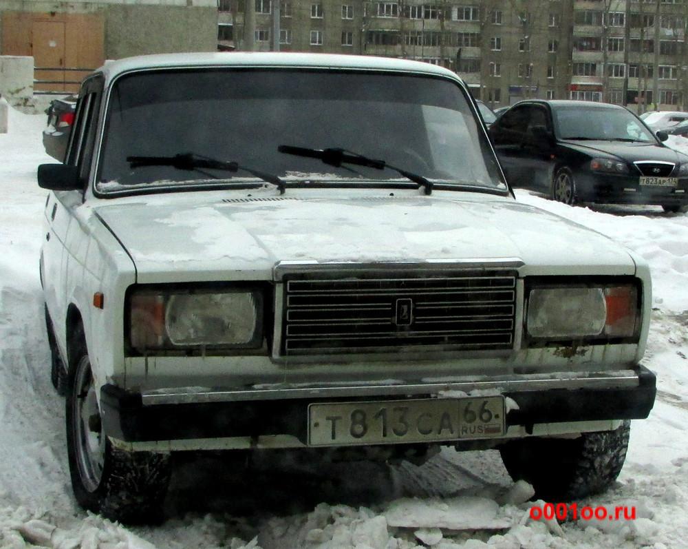 т813са66